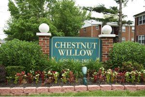Chestnut Willow